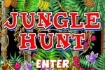 Jungle Hunt game free online