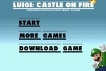 Luigi Castle On Fire