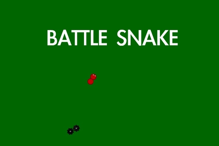 Battle Snake Game