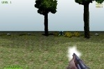 Turkey Shootout 3D game free online