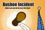 Bushoe Incident