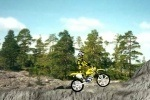 Dirt Bike 2 game free online