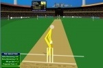Cann Cricket game free online