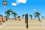 Beach Volleyball game free online
