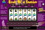 Birds Of A Feather Slots game free online