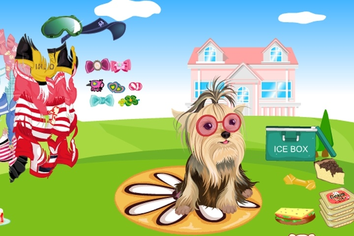 Cute Shitzu Dress Up Game - Animal Dress Up games - Games Loon